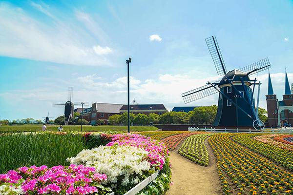 果苧芙精油均由法国格拉斯地区严选直采花材,全程低压蒸馏萃取